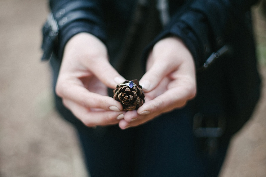 Pine cone ring shot - wedding photography