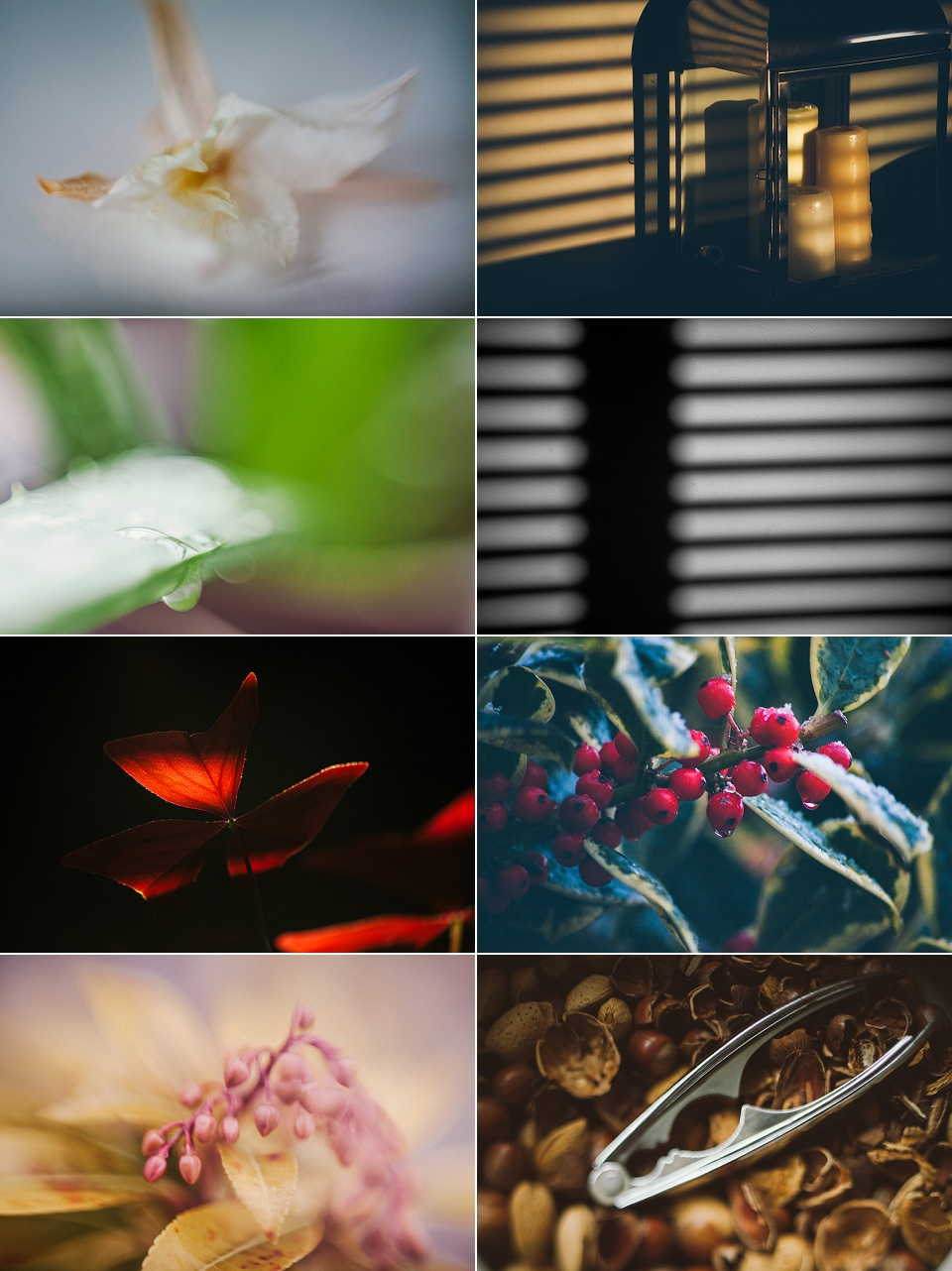 52 Week Photo Challenge - At Home