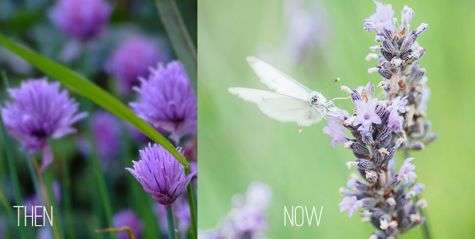 Then and Now Photography
